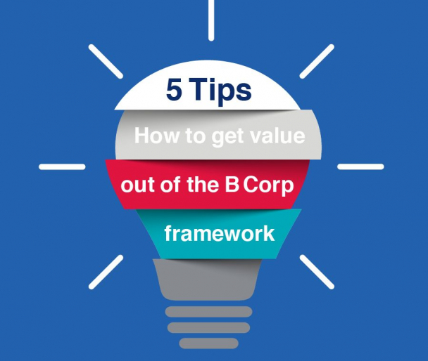 """Graphic of a lightbulb that reads """"5 tips for how to get value out of the B Corp framework"""""""